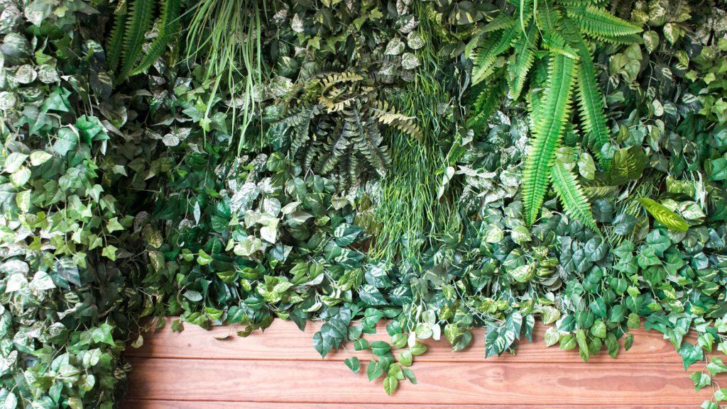 קיר ירוק מלאוכתי