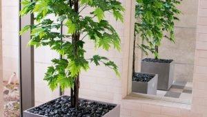 צמחייה מלאכותית עם אבנים שחורות