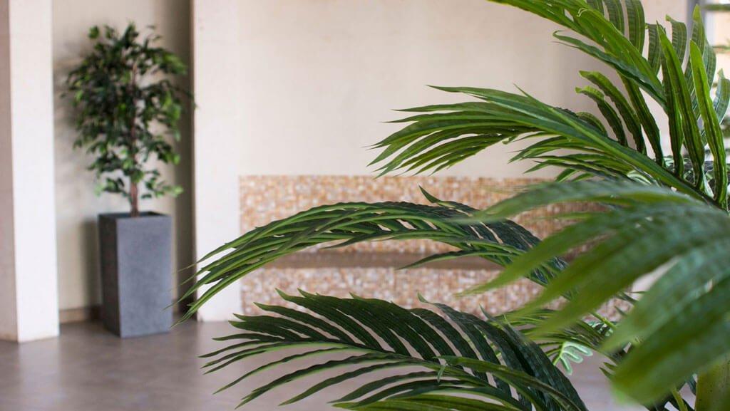 צמחייה מלאכותית ללובי הבניין