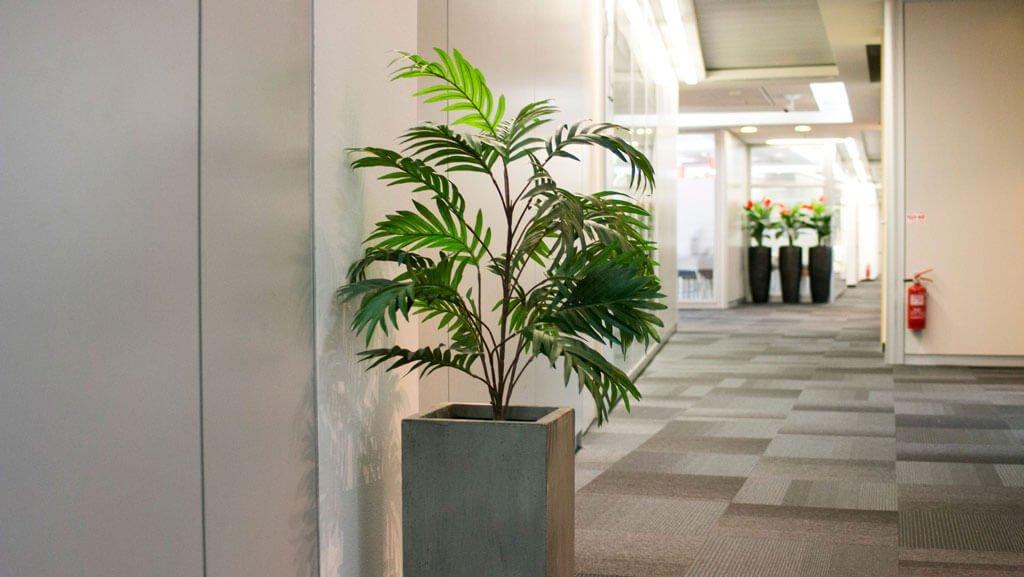 צמחייה מלאכותית למשרד