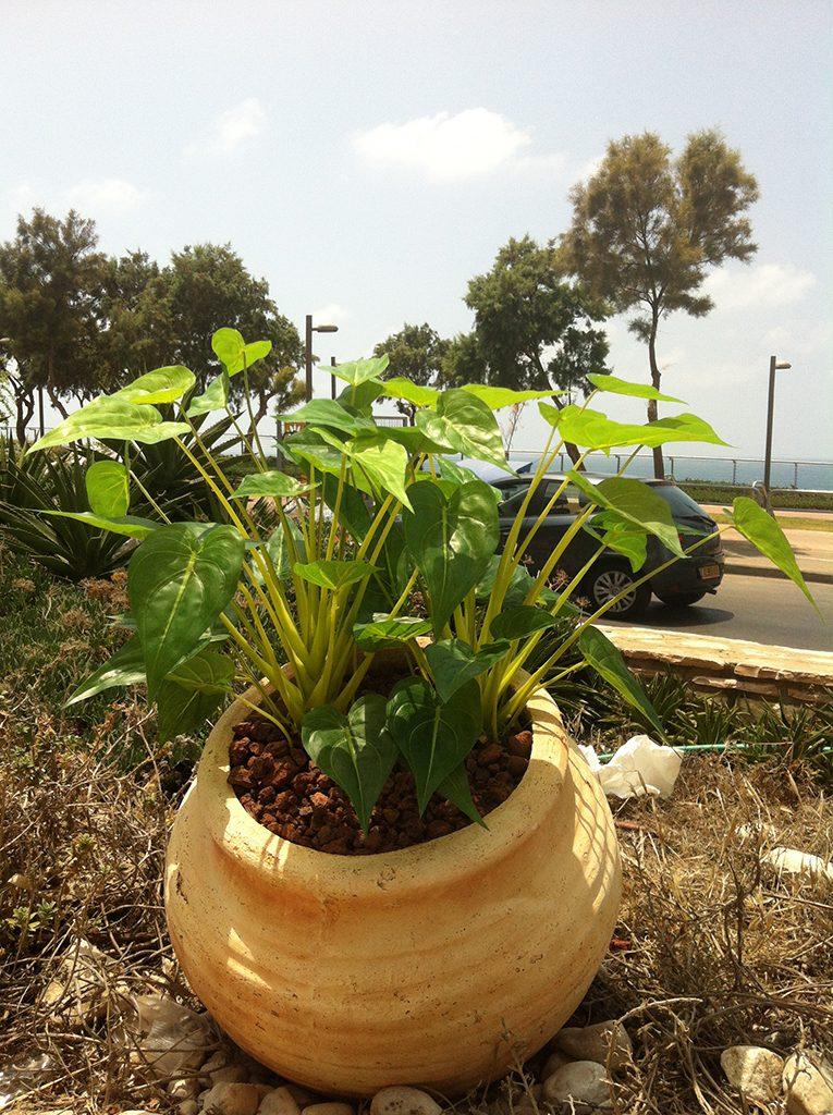 צמחייה מלאכותית עמידת חוץ