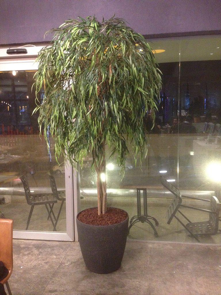 עץ מלאכותי גבוה
