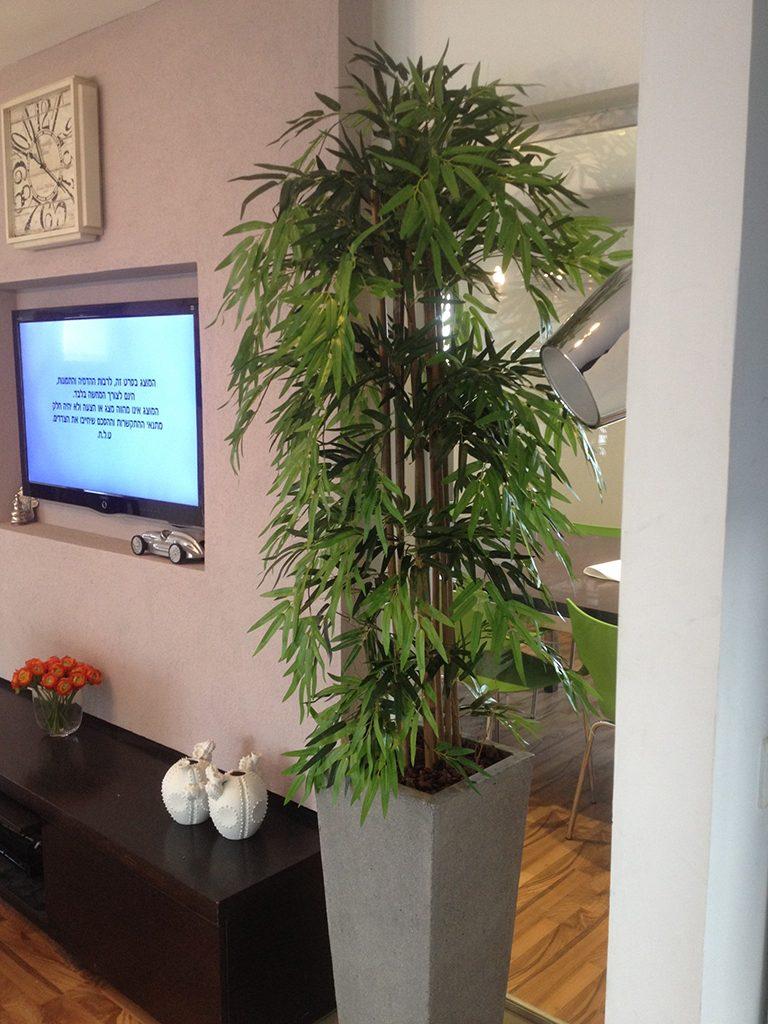 עץ מלאכותי במשרד