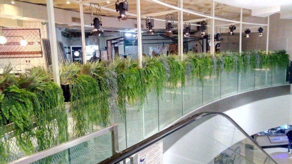 אדנית עם צמחים נשפכים
