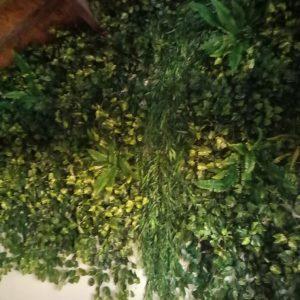 קיר ירוק תקרה גבוהה