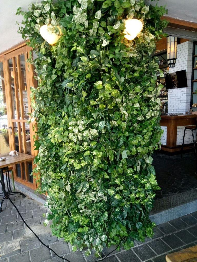 קיר ירוק במסעדה