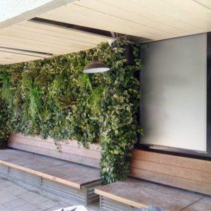 קיר ירוק בית קפה