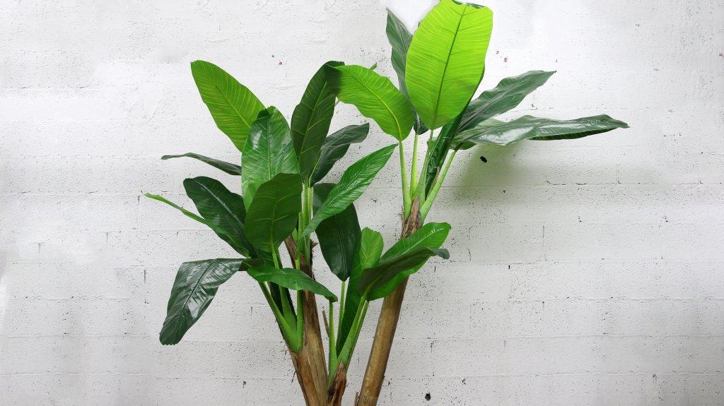 עץ בננה מלאכותי