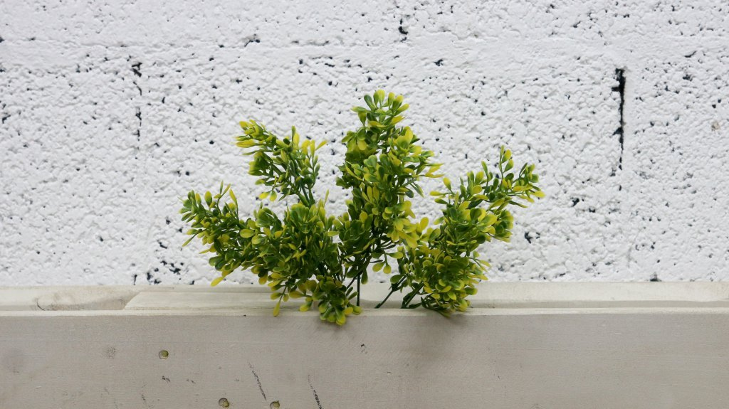 בוקט ירק צהוב ירוק