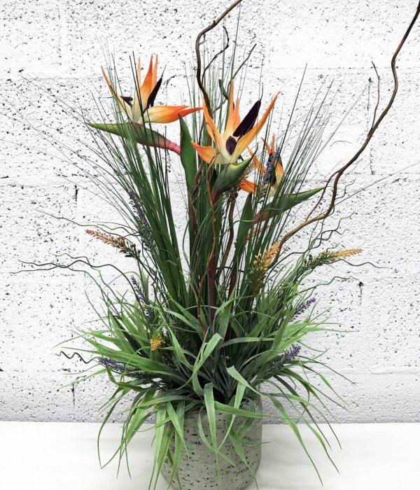 סידור עם פרחי ציפור גם עדן מלאכותי